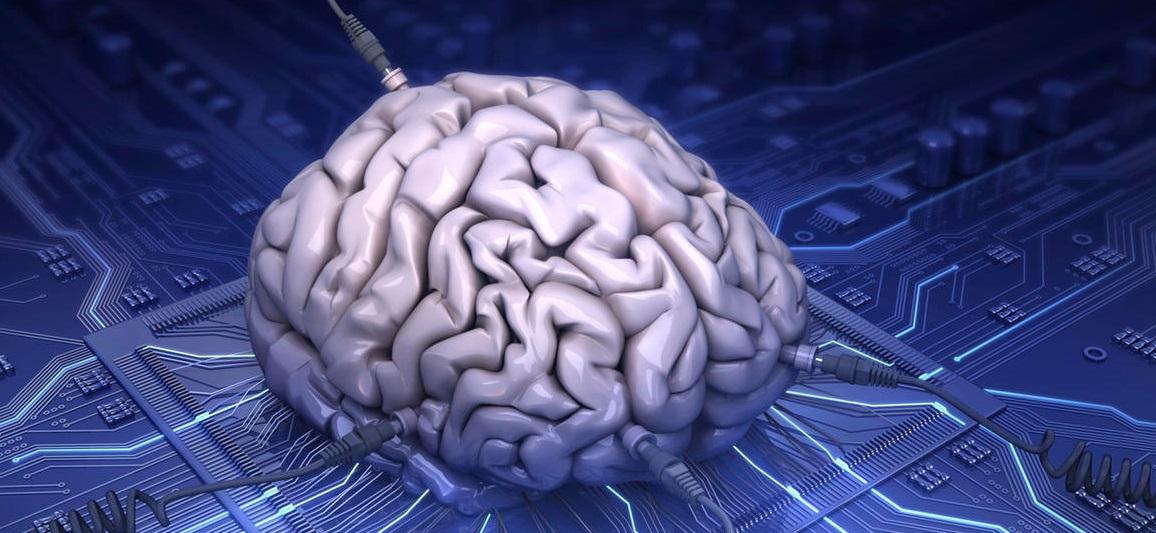 La mémoire cerveau
